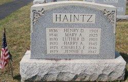 Henry D. Haintz
