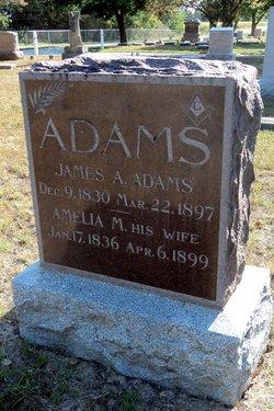 Amelia Mariah <i>Jones</i> Adams