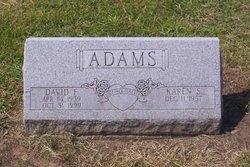 David F. Adams