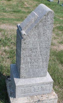 Nelson Baum