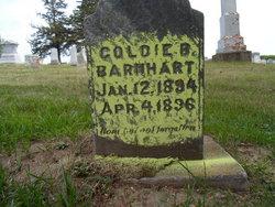 Goldie B. Barnhart