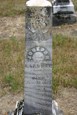 Joseph Hayward Burt