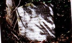 Andrew Jackson Bryan