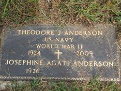 Theodore James Anderson