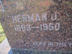 Herman J. Wildt