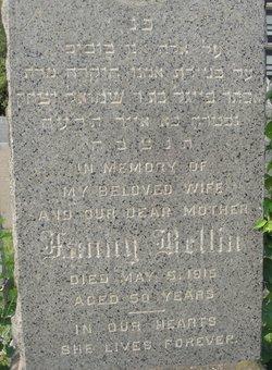 Fanny <i>Pruzansky</i> Bellin