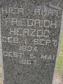 Johann Friedrich Herzog