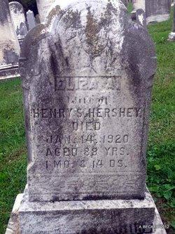 Eliza Ann <i>Bollinger</i> Hershey