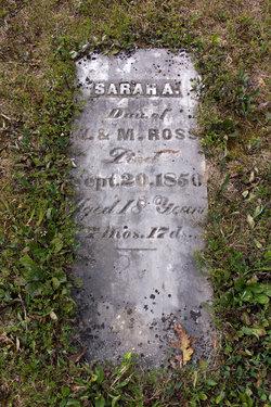 Sarah A Ross