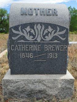 Sarah Catherine <i>Woodruff</i> Brewer