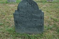 Luke N. Parsons