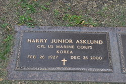 Harry Junior Askland