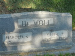 Carol J. De Wolf