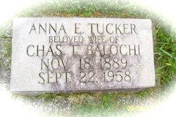 Anna E <i>Tucker</i> Balochi
