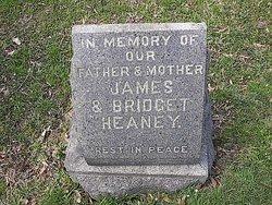 Mary Ann Heaney