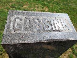 Henry Gossink