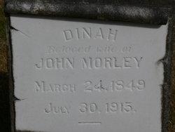 Dinah Morley