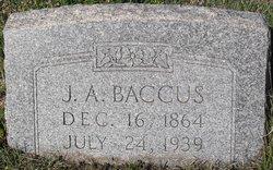 John Adam Baccus