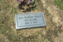 Joel Madison Mullis