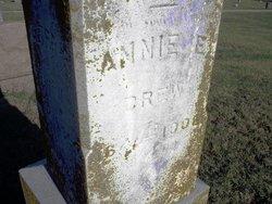 Annie E Drew