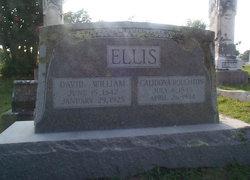 Calidona <i>Roughton</i> Ellis