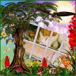 The Shelter Cat Stevie