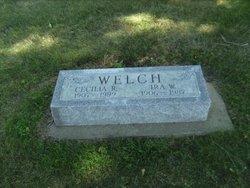Ira William Welch