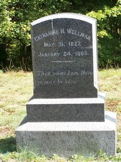 Catherine Hamblet Wellman