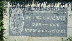 Antonia S. Alvarado