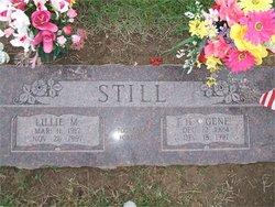 Lillie M <i>Ruth</i> Still