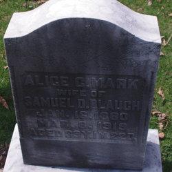 Alice E <i>Mark</i> Blauch