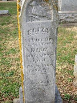 Eliza <i>Owens</i> Cool