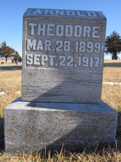 Theodore Arnold