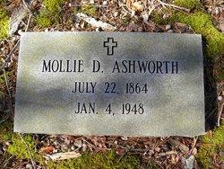 Mollie Mildred <i>Driscoll</i> Ashworth