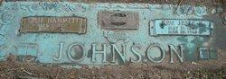 Rev Jesse Eustace Johnson