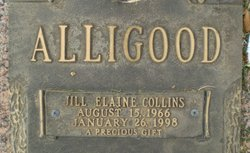 Jill Elaine <i>Collins</i> Alligood