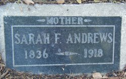 Sarah F Andrews