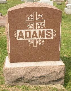 Aloysius K Adams