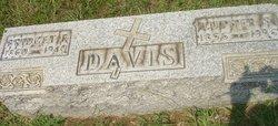 Bridget Frances <i>Hackett</i> Davis