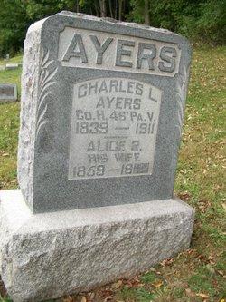 Alice Rosetta <i>Drake</i> Ayers