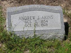 Andrew Jackson Akins