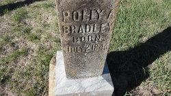 Polly A. <i>Johnson</i> Bradley