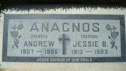 Andrew Anagnos