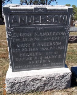Eugene Alfred Anderson