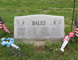 Harold Robert Bales