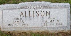 Alma M Allison