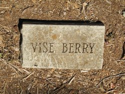 Vise Berry