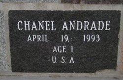 Chanel Andrade