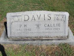 Callie Davis