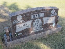 Tamara Tam <i>Flanders</i> Bahe